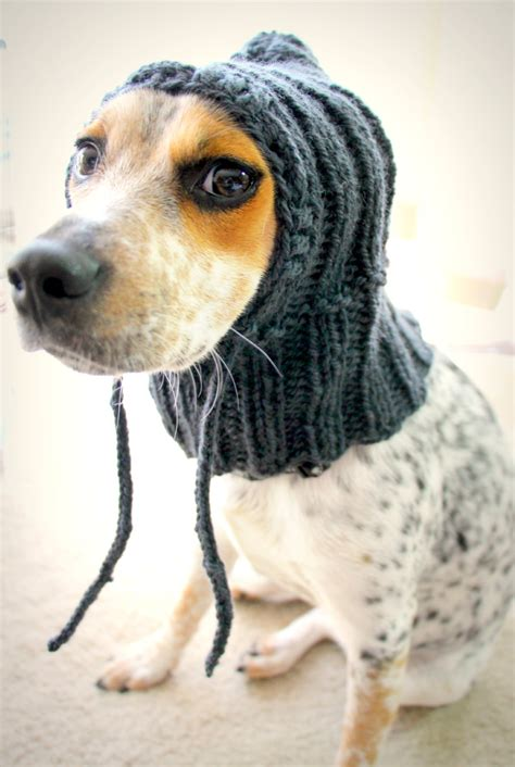 knitted hats for dogs custom knit hat hoodie pet scarf pet clothes
