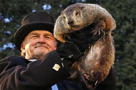 groundhog day of phil sees his shadow on groundhog day