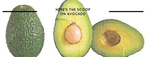 cut seed here s the scoop on avocado farm and dairy