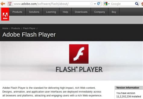adobe flash player adobe flash player offline standalone installer