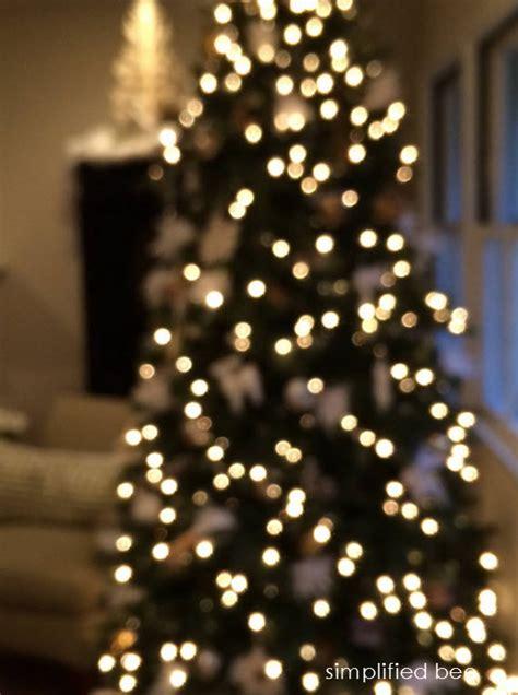 twinkle lights tree twinkling tree lights images