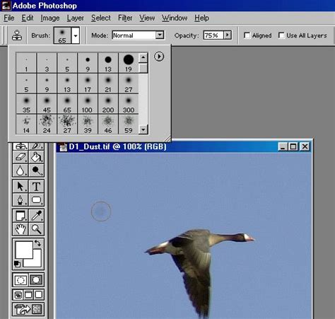 rubber st tool photoshop photoshop rubber st tutorial lonestardigital