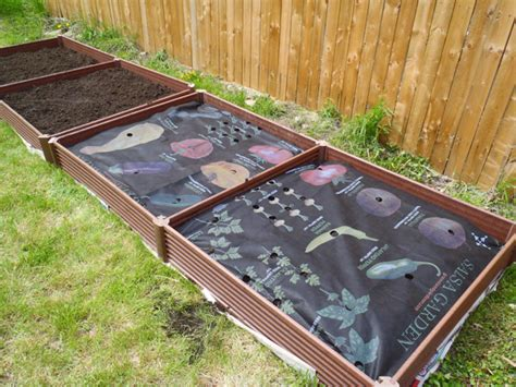 raised vegetable garden kit how to plant a raised bed garden with a greenland gardener