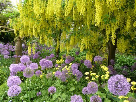 cotswold garden flowers cotswold garden tours 2018
