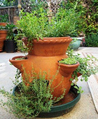 herb pot 25 trending strawberry pots ideas on bend or