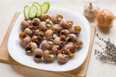 c 243 mo limpiar y cocinar caracoles - Como Cocinar Los Caracoles