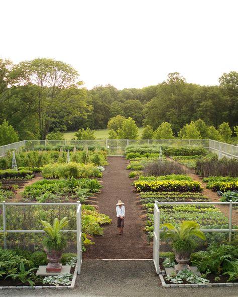 vegetable garden care martha stewart