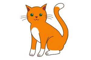 cat easy how to draw cat step by step drawing lessons drawingnow