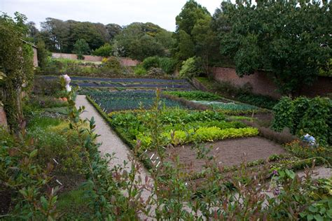 walled gardens trengwainton walled garden cornwall guide photos