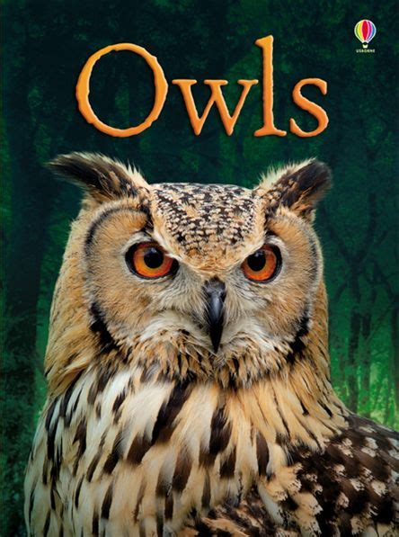 owl picture book cbell