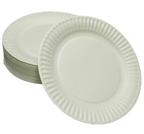 paper plates disposable paper plates