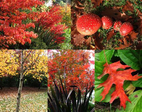 Garden Of Weather Garden Weather