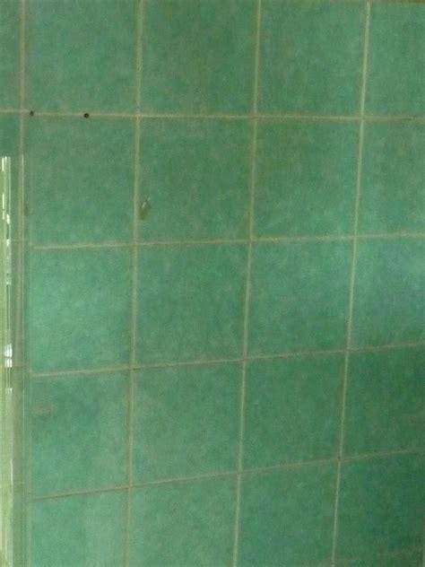 comment utiliser le vinaigre blanc dans sa salle de bain et sa buanderie machine 224 laver