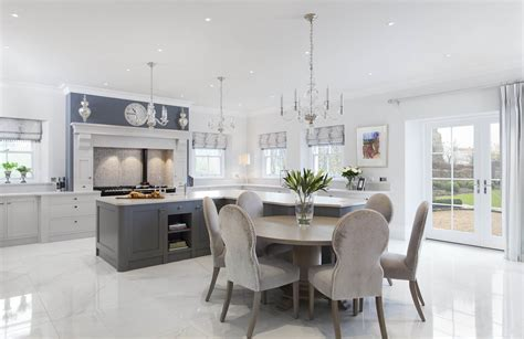 kitchen design ireland wingsioskins home design