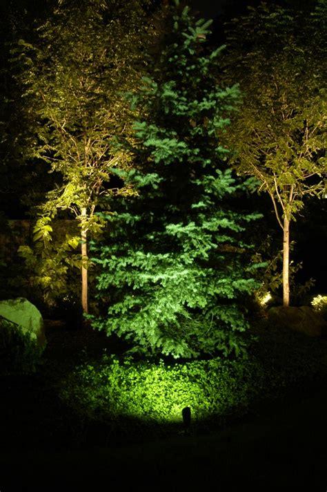 landscape lighting for trees professional landscape tree lighting park city salt