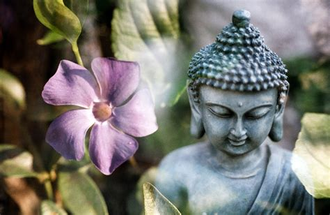 buddhist meditation 15 of the best meditation techniques in buddhism for