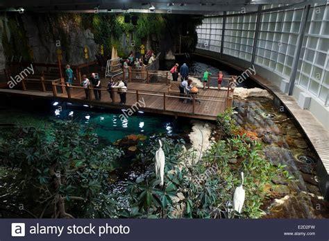 pas de calais boulogne sur mer aquarium nausicaa national sea stock photo royalty free