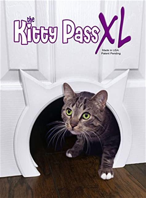 large cat doors interior doors pass xl large cat door interior large pet door