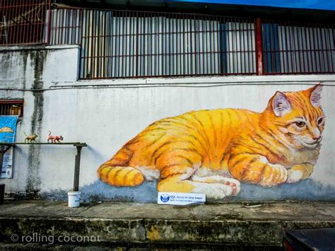 cat painting guide travel guide to georgetown penang malaysia ooaworld