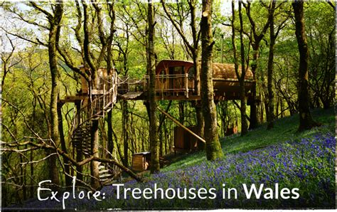 Make Your Own Canopy treehouse holidays in the uk france portugal amp italy