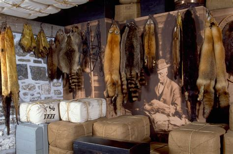 fur trade fur trade pictures on animal picture society