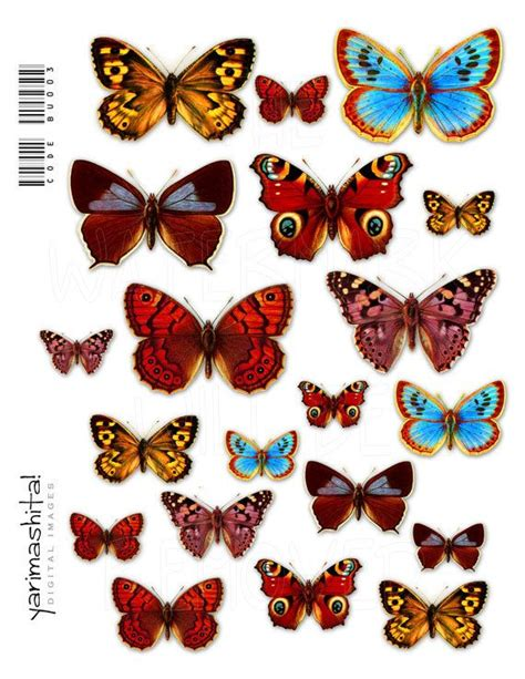 butterfly decoupage butterfly vintage images digital collage sheets colorful