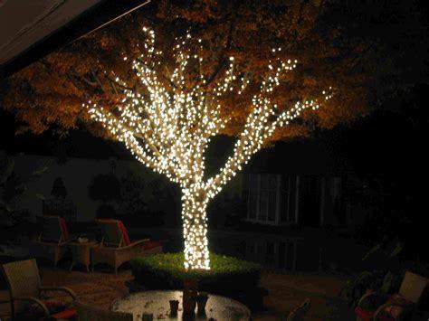 tree solar lights outdoor tree lights string 28 images outdoor patio