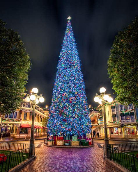 disney tree lights stunning light displays from around the world
