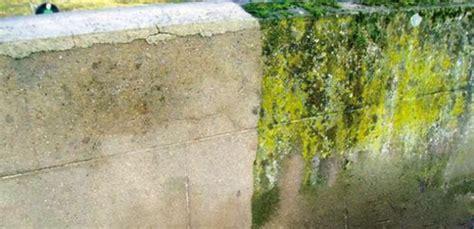 design nettoyer sa facade metz 26 nettoyer lave linge avec bicarbonate de soude et vinaigre