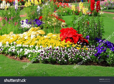 flower garden photo flower garden background stock photo 93855559