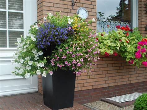 Blumenkübel Bepflanzen Vorschläge by Block Referenzkundenblog Pflanzk 252 Beln Ae Trade