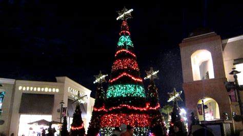 images of wiregrass lights show tree