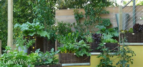best vegetables for small garden ideas for small gardens growing vegetables vertically