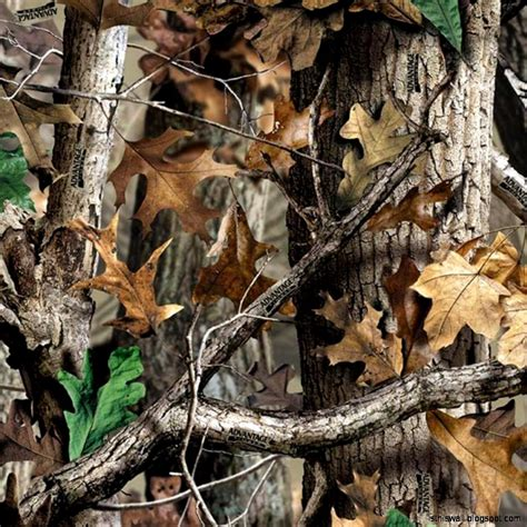 real tree for realtree camouflage wallpaper this wallpapers