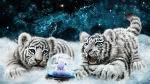 white snow globe blanc b 233 b 233 s tigres regardant le hd fond d 233 cran snowglobe