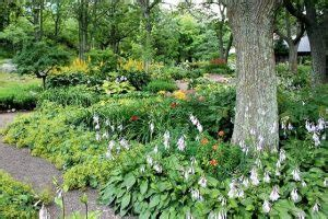 eco friendly landscaping eco friendly landscaping how to put your yard to work for