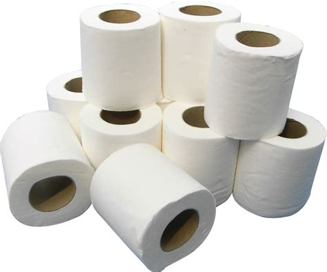 from toilet paper rolls china authorities install recognition software to