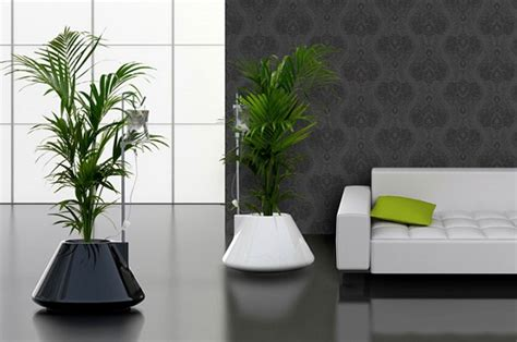 modern indoor planters modern planters indoor 28 images boxcar planter series