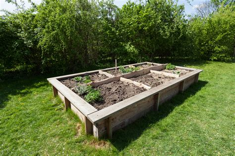 how to set up a vegetable garden bed how to build raised garden beds tips for raised bed