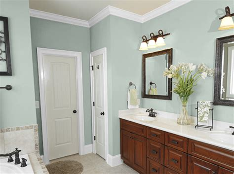 Neutral Paint Colors For Bathroom by Bathroom Sherwin Williams Bathroom Paint Colors Neutral