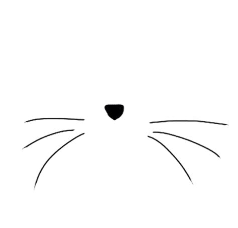 Cat Black And White Transparent Cat Whiskers Transparent