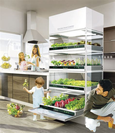 kitchen vegetable garden kitchen nano garden serves excellent way to grow your own