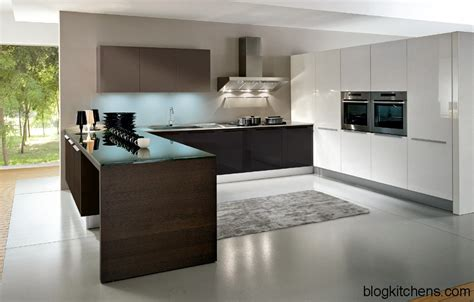 design of cabinet for kitchen european kitchen cabinets pictures and design ideas