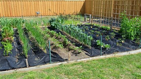 how to start a vegetable garden bed how to start a vegetable garden ehow raised bed gardening