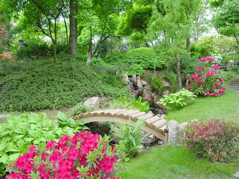 how to create a flower garden ten simple advices how to create a flower garden of a
