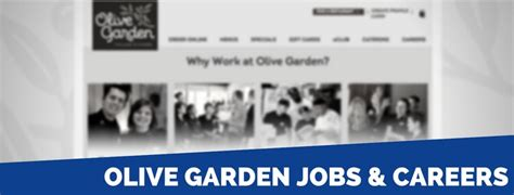 olive garden application 2018 careers requirements