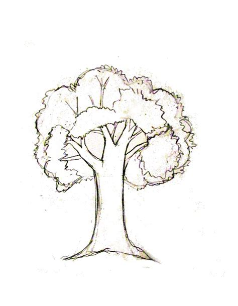 tree drawing how to draw a tree tutorial journaling