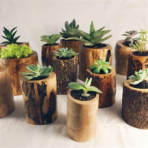 planters for succulents 25 best ideas about succulent plants on