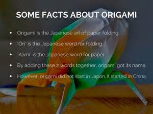 origami facts origami by schaller30