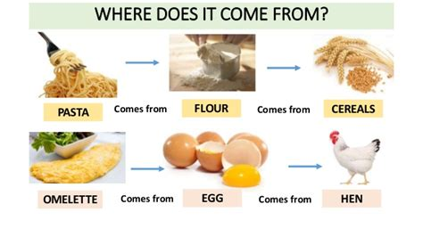 where do come from where does food come from